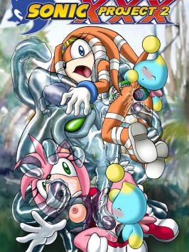 Proyecto Sonic XXX – Parte 2
