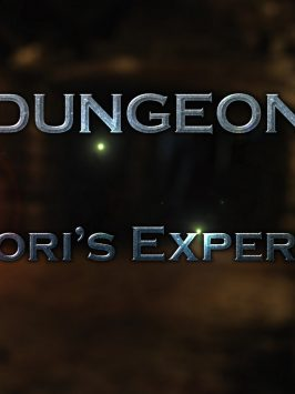 Dungeon – Syndori´s Experience [Affect3D – X3Z]
