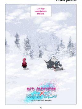 Red Blosson Y Winter Snow 3